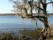 PATRON – Touring Alabama in 1820, 1821 – Part IV Letters written home by Adam Hodgson