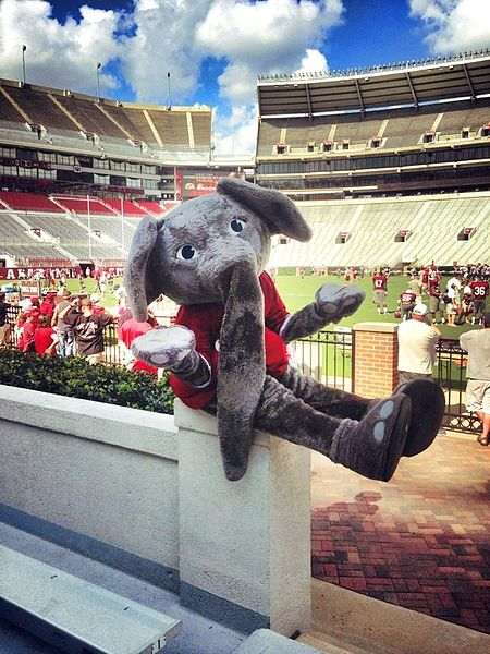 The day the Birmingham police helped the University of Alabama football mascot retrieve his paws