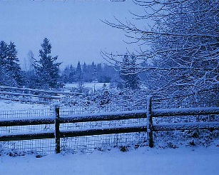 snow scene with fence