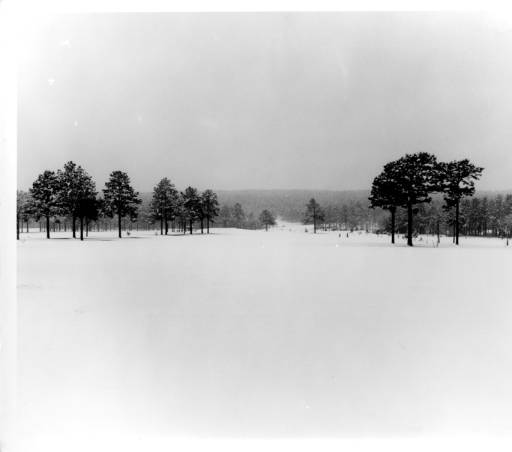 Snow blankets the Mobile area in 1954. This image shows how the area around the Mobile Country Club looked after the snowfall.