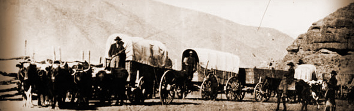 Wagon-Train