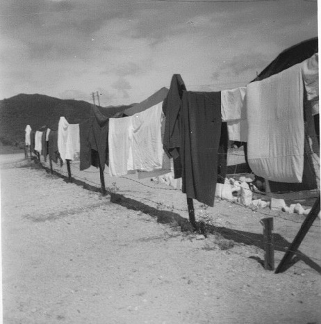 laundry drying on fence