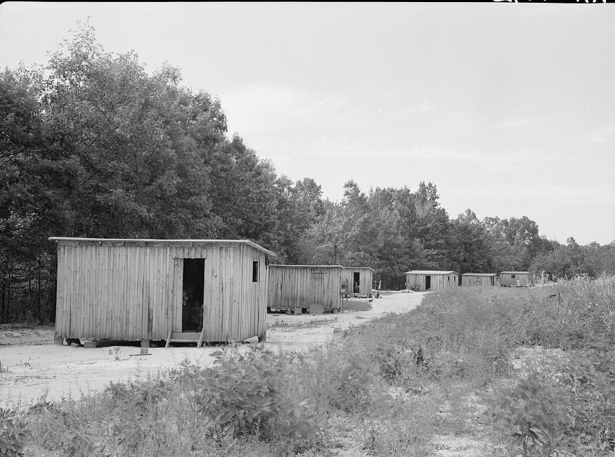 Skyline Farms - the temporary homes