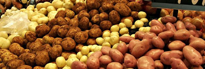 PATRON + RECIPE WEDNESDAY: Have you ever eaten Potato Snow?