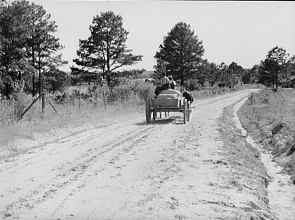Bringing home feed and fertilizer from store. Gee's Bend, Alabama, photograph by M. P. Walcott 1939