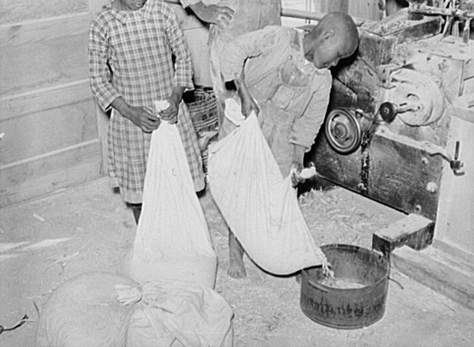 1939 Boy pouring his corn for grinding into meal at cooperative grist mill. Gee's Bend, Alabama