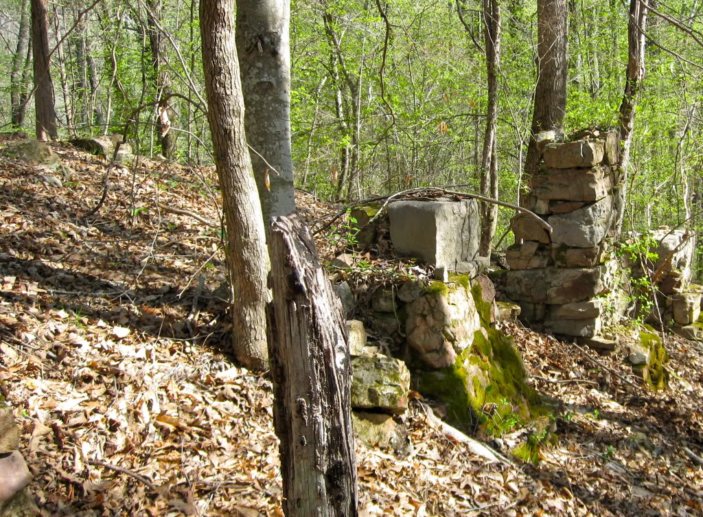 Blount springs feature
