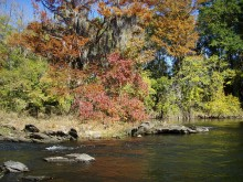 PATRON + A relic of DeSoto's visit in 1540 was found on the riverbank in Elmore County, Alabama