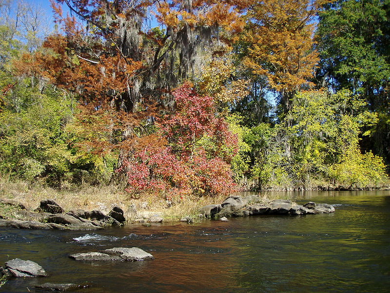 fall coosa near wetumpka,alabama