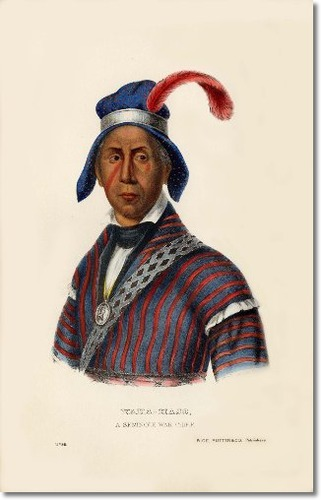 YAHA-HAJO (Mad Wolf) was the second principal war chief of the Seminole nation and had been among the seven chiefs selected to inspect the western lands