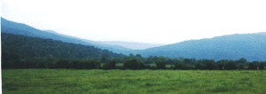 Big coon valley