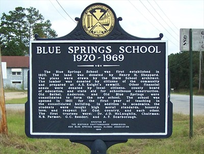 Blue springs school