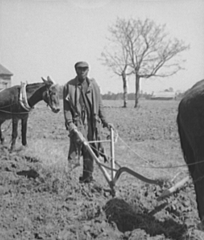 Sharecropper plowing. Montgomery County, Alabama 1937 Arthur Rothstein