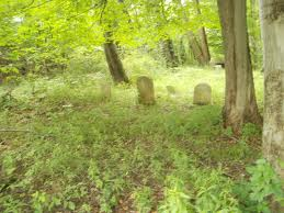 cemetery in woods