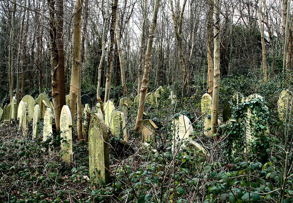 Old Cemeteries are often hidden in the forests – You can ...