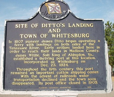 ditto's landing