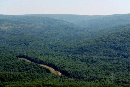 ozark hills