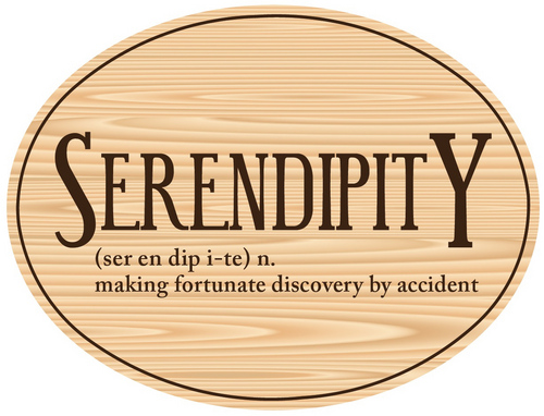 This serendipity moment told the whole story