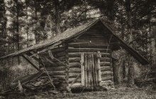 PATRON + Diary Of Traveling To Alabama In Early 1800s – Part I