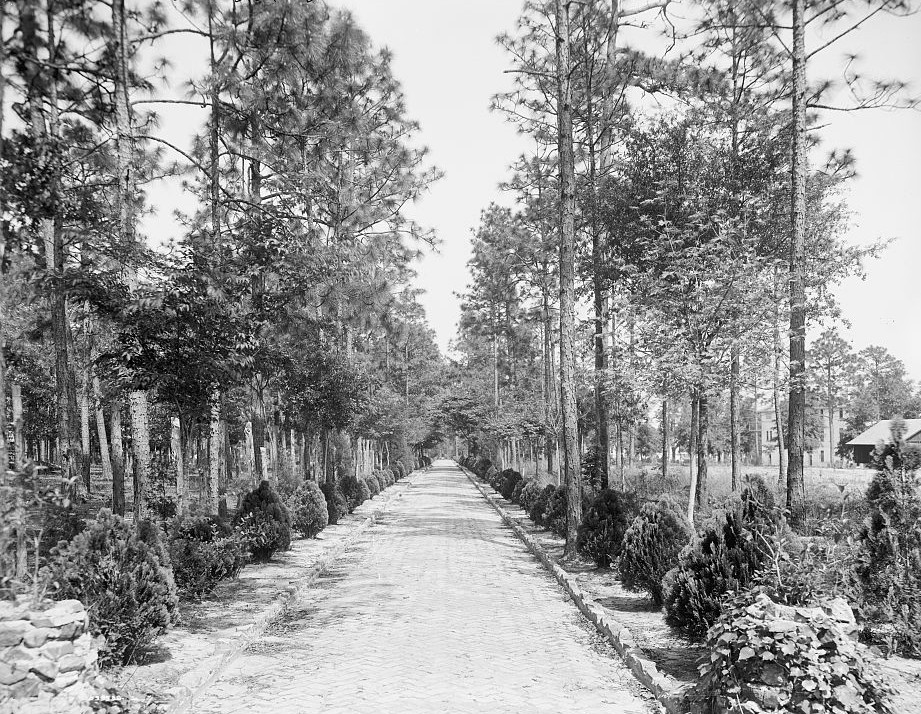Avenue to grotto, Spring Hill College, Mobile, Alabama -ca. 1900 - Detroit Publishing Company