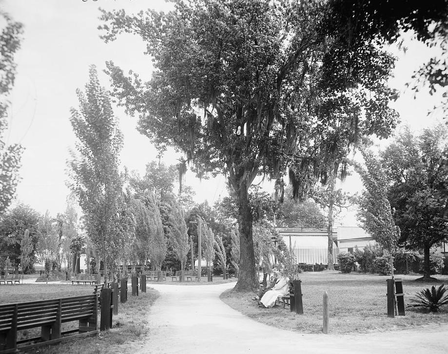 Entrance to Monroe Park, Mobile, Alabama - ca. 1906 - Mobile, Alabama -Detroit Publishing Company