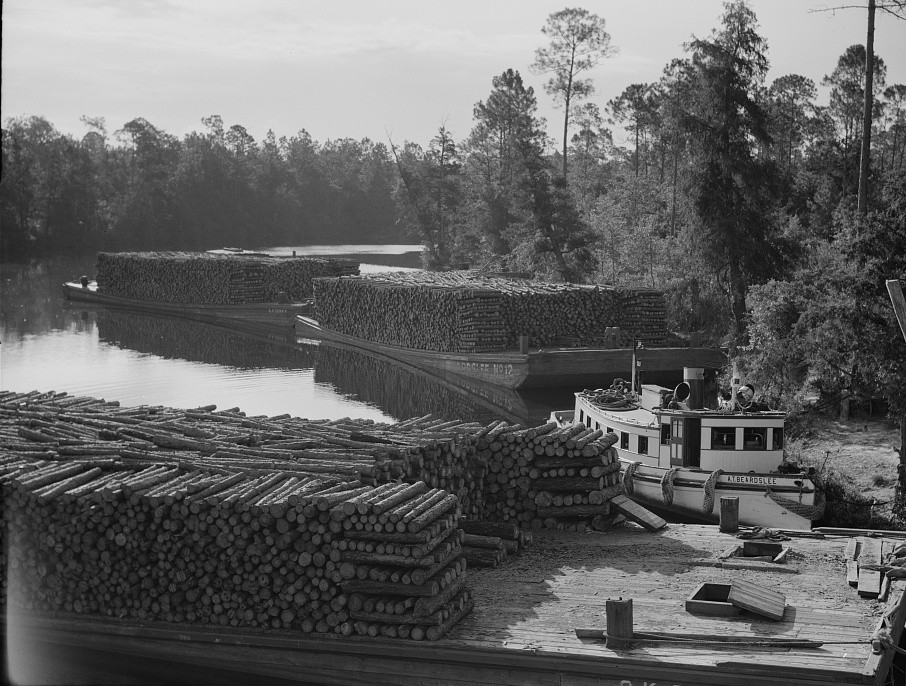 Pulpwood going down the River Styx to Mobile by inland waterway. Near Robertsdale, Alabama