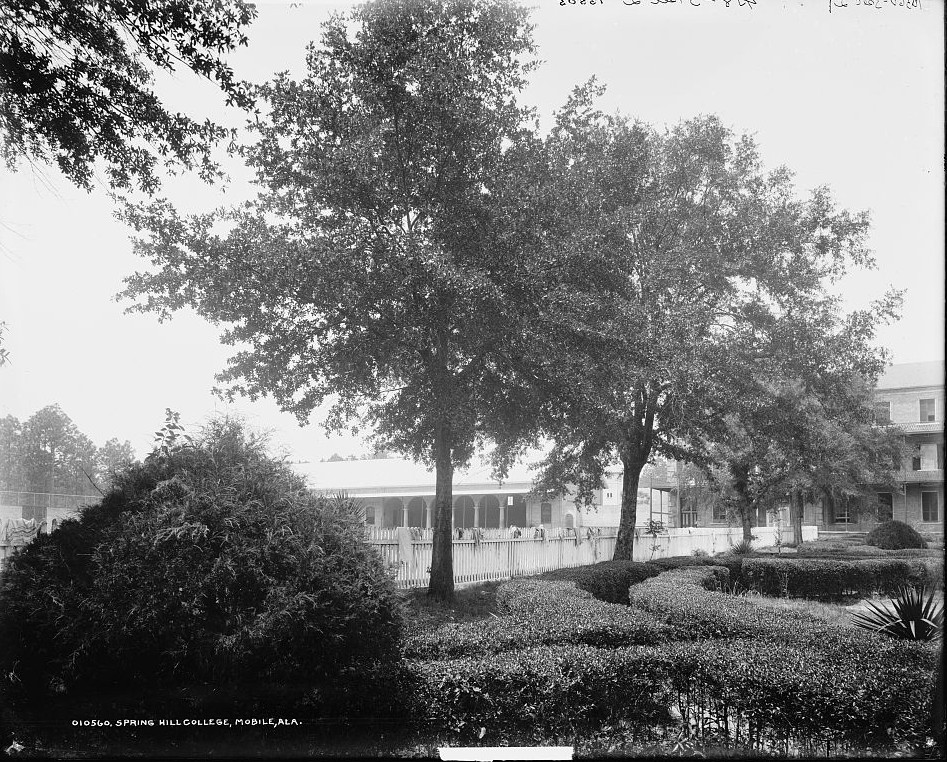 Spring Hill College, Mobile, Alabama3 - ca. 1900- Detroit Publishing Company