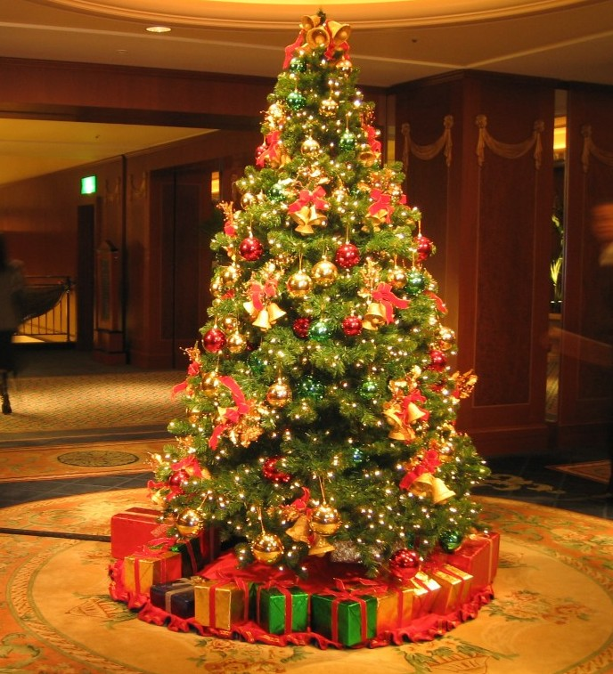Christmas Tree Orgin: This Is Every Genealogist's Christmas Wish!