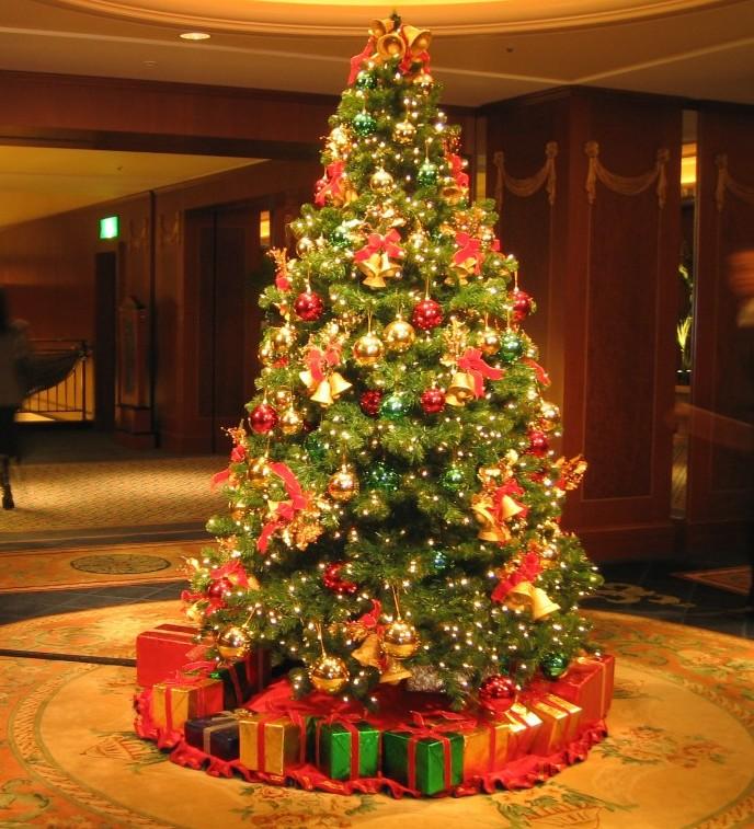 Christmas-Tree-History-2