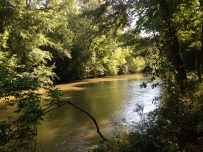Hatchett creek