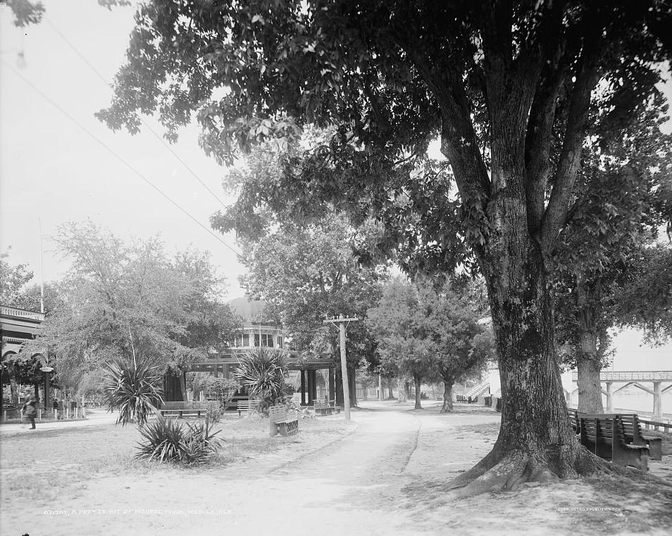 Monroe Park, Mobile, Alabama between 1905-1915 - Detroit Publishing Company