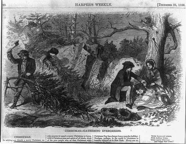 Two men cutting evergreen trees; one person carrying a tree; man kneeling alongside woman who is making wreaths.1858 loc