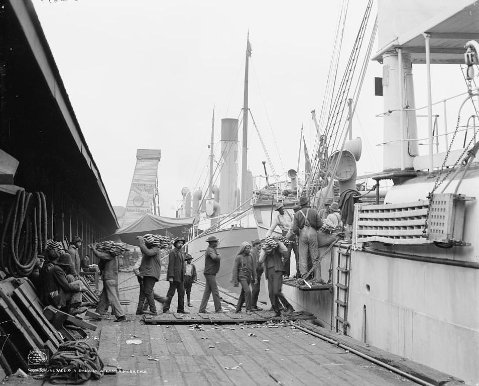 Unloading a banana steamer Mobile, Alabama ca. 1900 Detroit Publishing Company