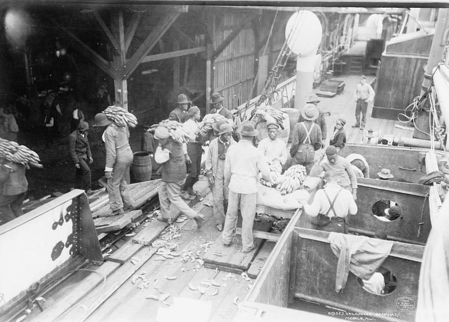 Unloading bananas Mobile, Alabama ca. 1900 Detroit Publishing Company