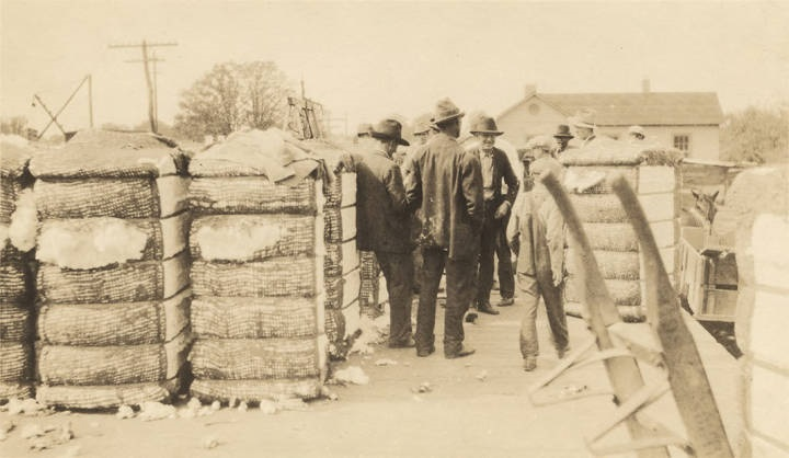 Men_buying_and_selling_bales_of_cotton_on_a_railroad_platform_in_Colbert_County_Alabama (Alabama Department of Archives and History)
