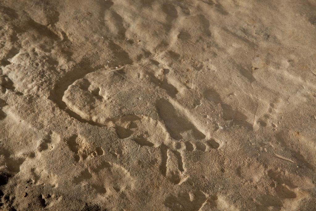 This prehistoric aboriginal art petroglyph shows carved footprints and the form of a snake. It was taken from a site in western Colbert County Tuscumbia, Alabama