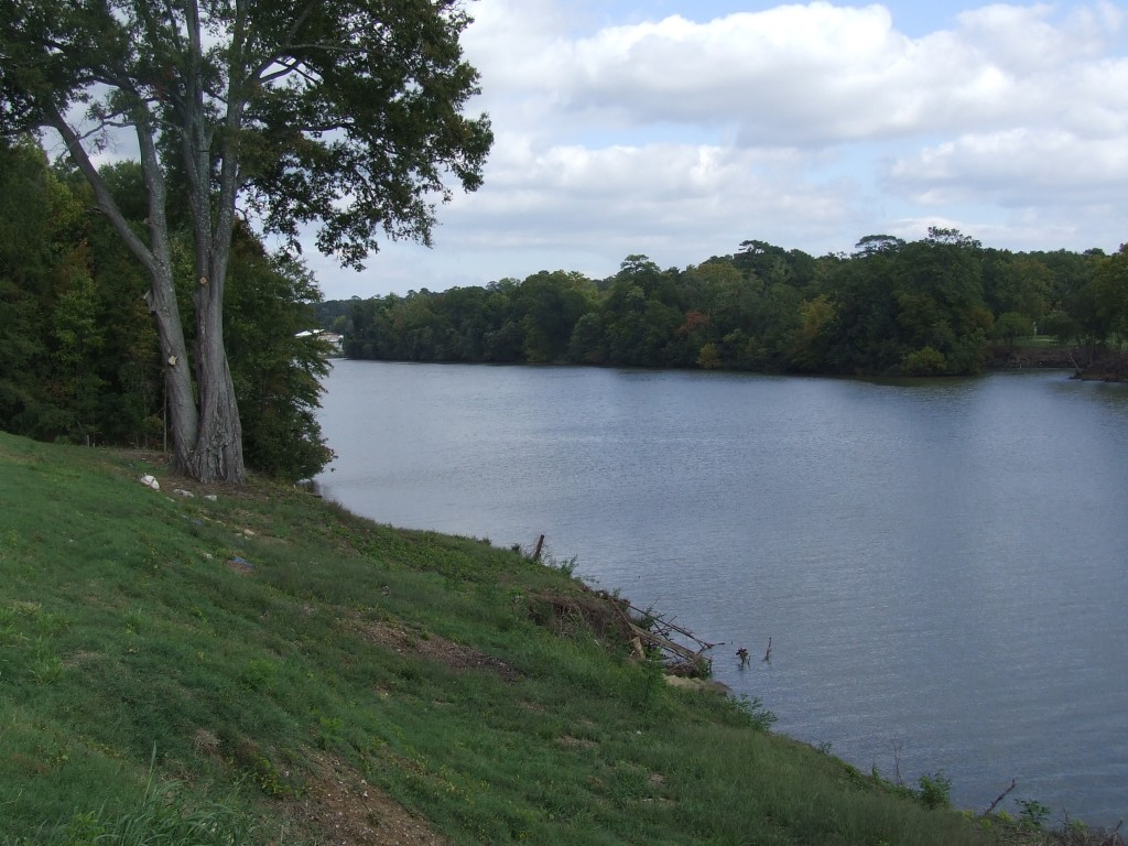 Black Warrior River by Tuscaloosa Business