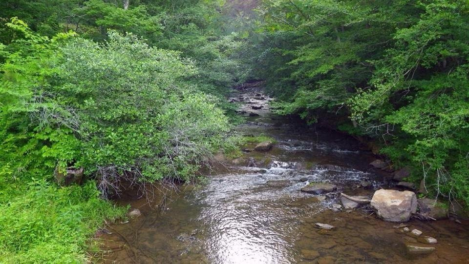 unnamed creek2