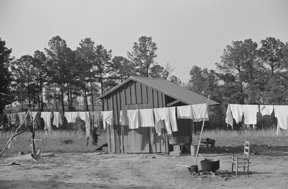 A washline, instead of hanging the clothes on a fence or the bushes, in Nolan Pettway's backyard, Gees Bend, Alabama