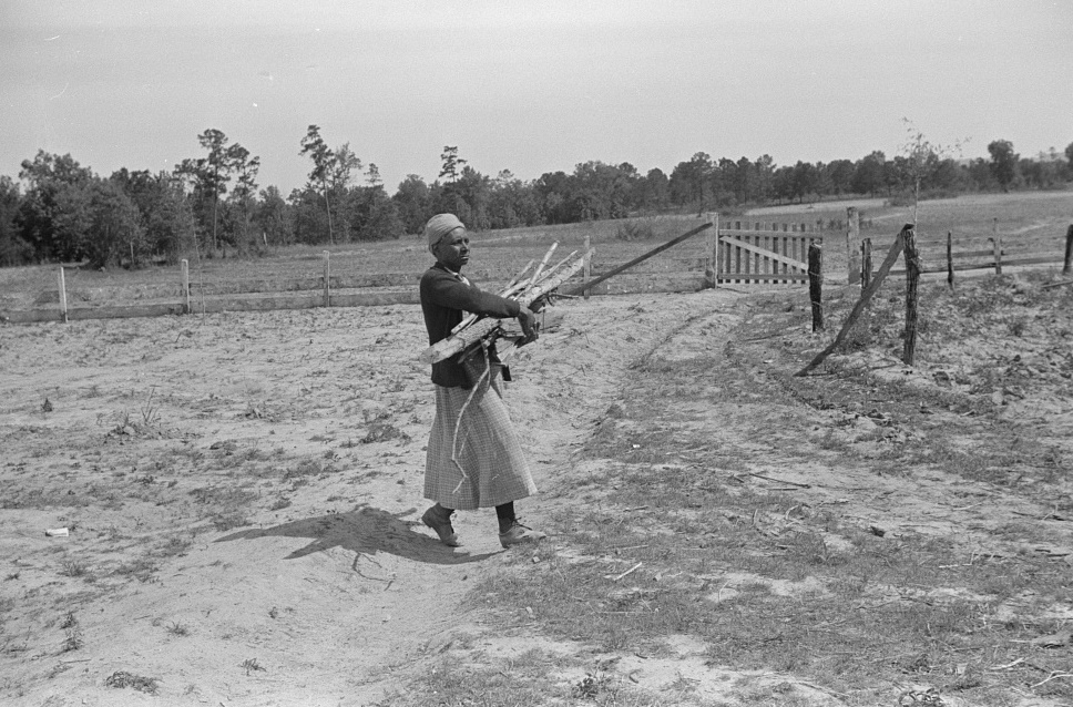 Aunt Nellie Pettway, carrying wood from yard for fireplace. Gees Bend, Alabama