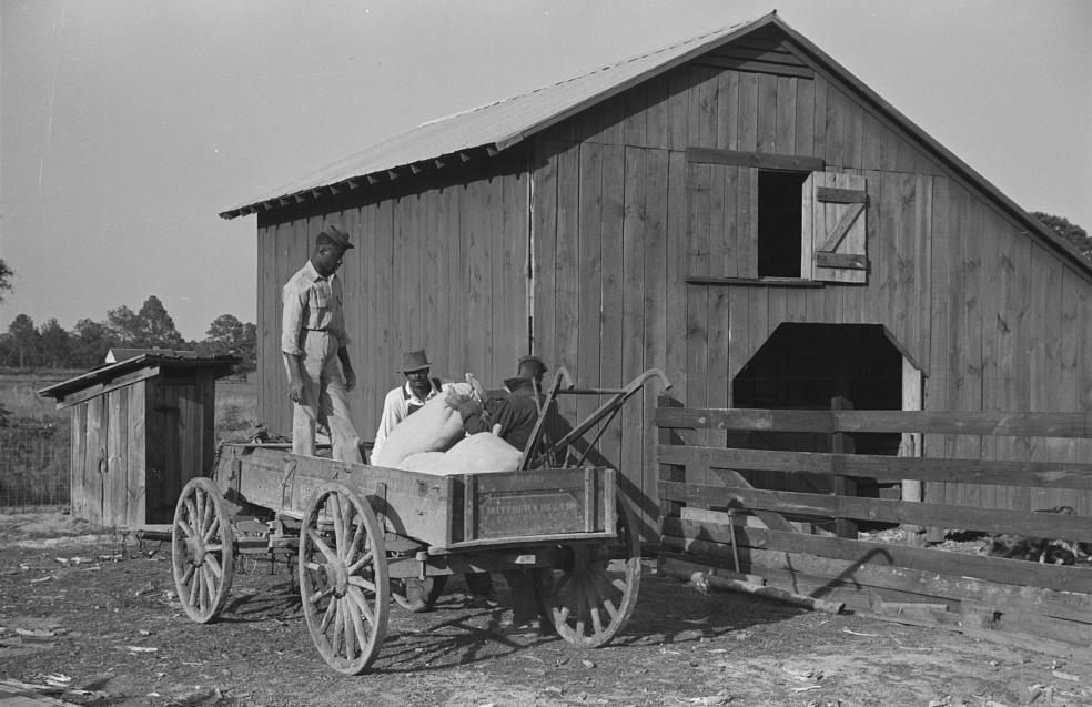 Fertilizer for Nolan Pettway2, Gees Bend, Alabama