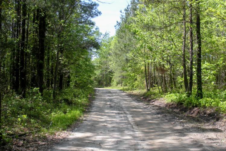 Midway, Bullock County, Alabama (Landsofamerica.com)
