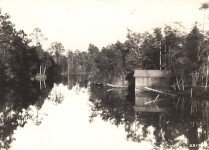 Magnolia Springs, Alabama has had delivery of mail by water for one hundred years