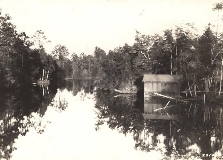 Magnolia_Springs_in_Baldwin_County_Alabama Nov. 1928 (ADAH)