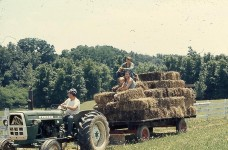 Making hay while the sun shines – thankful for the work ethic I learned