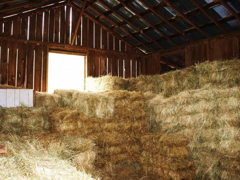 Hay barn (triplethreattriathlon)