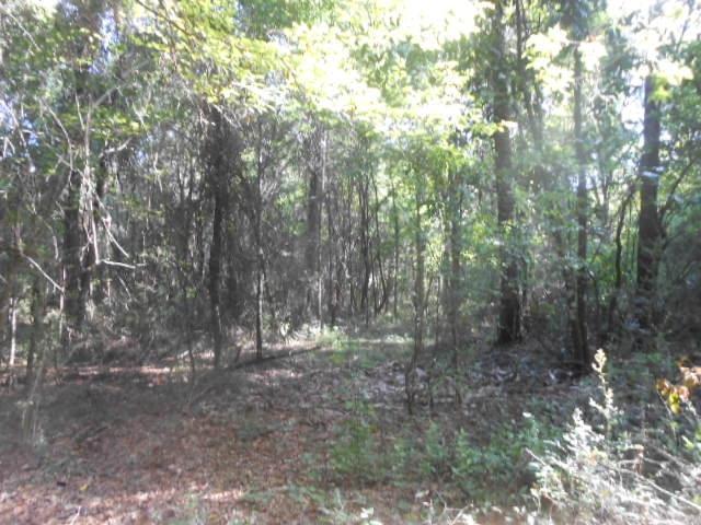 Bellwood land (landsofamerica.com)