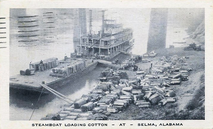 Steamboat Loading Cotton - at - Selma, Alabama (ADAH)