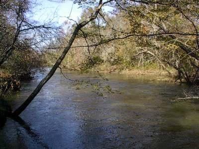 Town Creek, Alabama (LandsofAmerica)