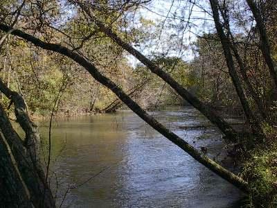 Town Creek, Alabama2 (LandsofAmerica)